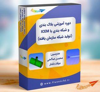 شبکه باسازمان ICEM